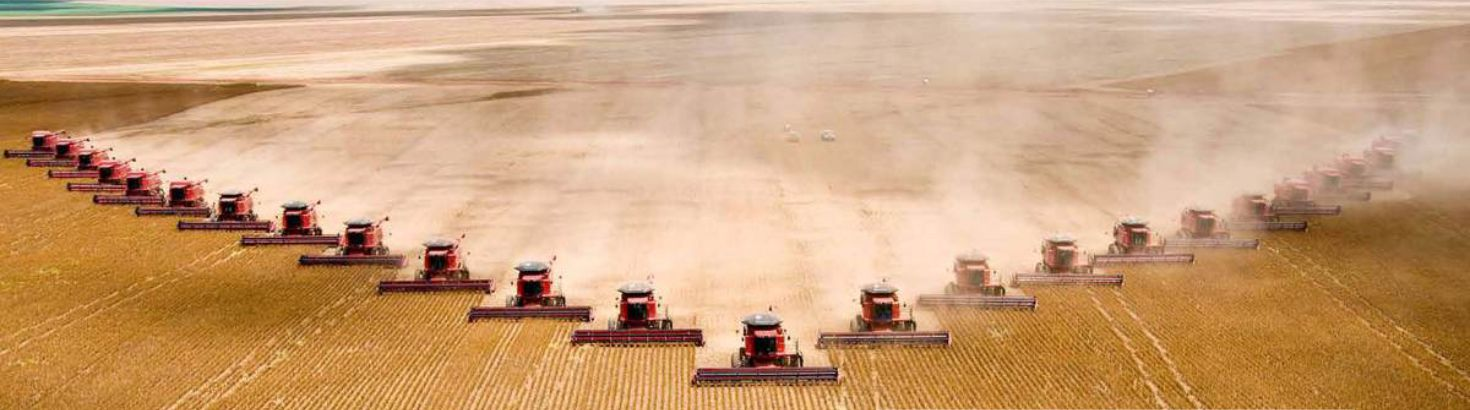 multiple combines harvesting in the same field